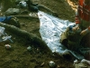 ccf01292010_00029-2