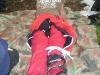 tabor_2007_140